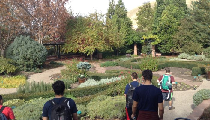 Visiting the University of Utah's Red Butte Garden and Arboretum