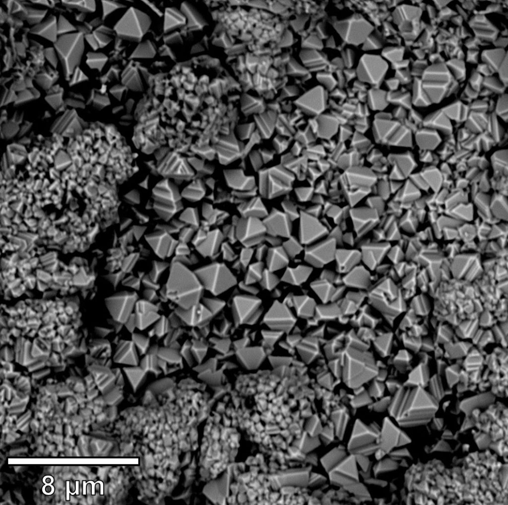 An electron microscope image taken on one of Neal's desktop SEMs shows an oxidized ferritic stainless steel (what he studied for his Ph.D). The image shows a two-layer Cr2O3/MnCr2O4oxide scale formed on Crofer 22 after high temperature exposure.
