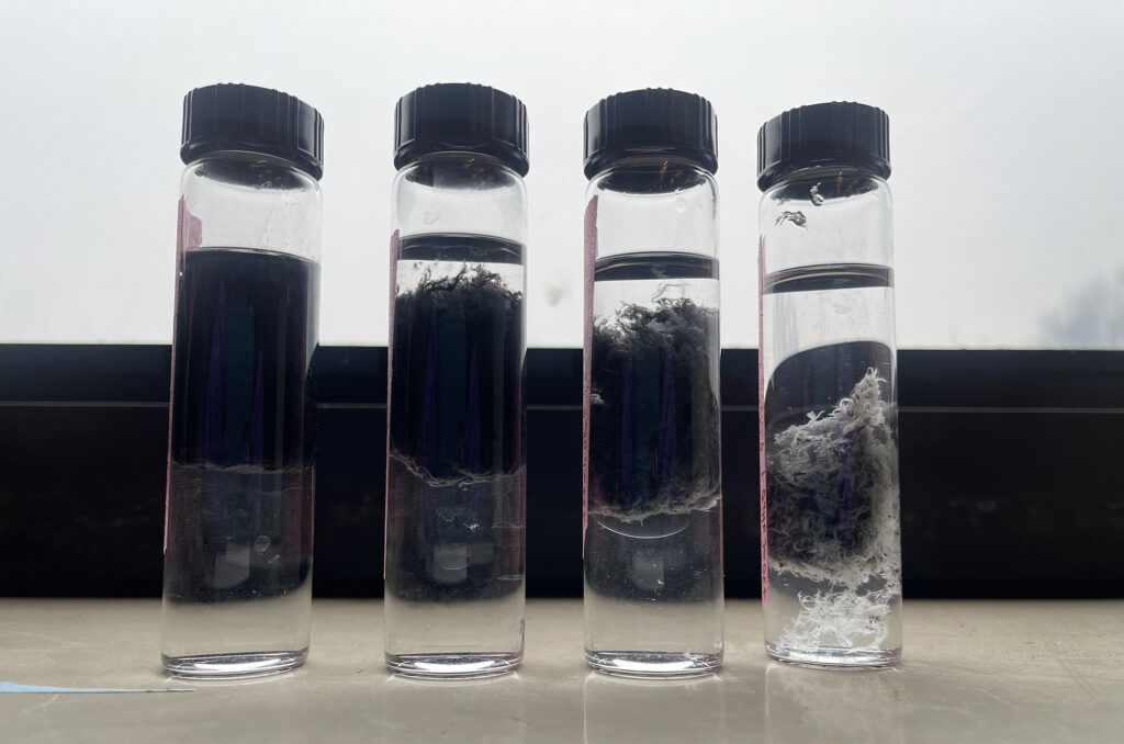 Glass fibers suspended in an aqueous solution with various graphene concentrations